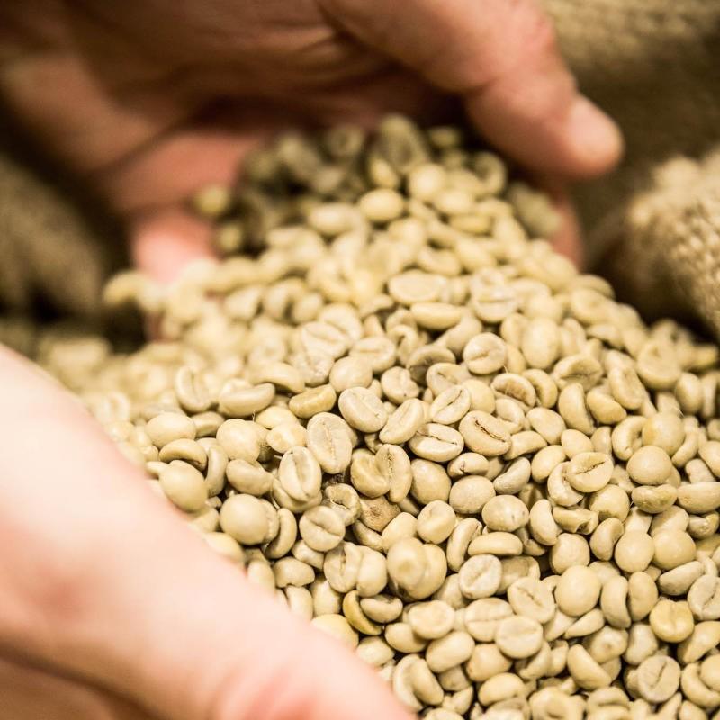 Kaffee Rösten Rohqualität