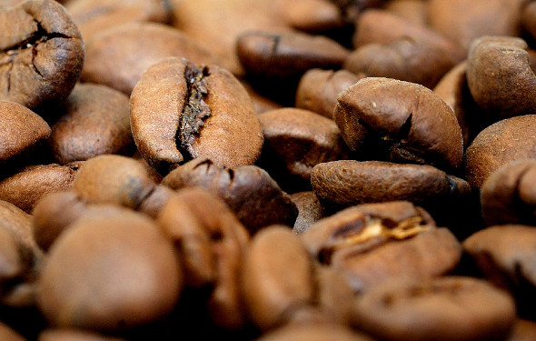 Bester Kaffee für Vollautomaten: Welche Kaffeebohnen für bestes Kaffee-Erlebnis?